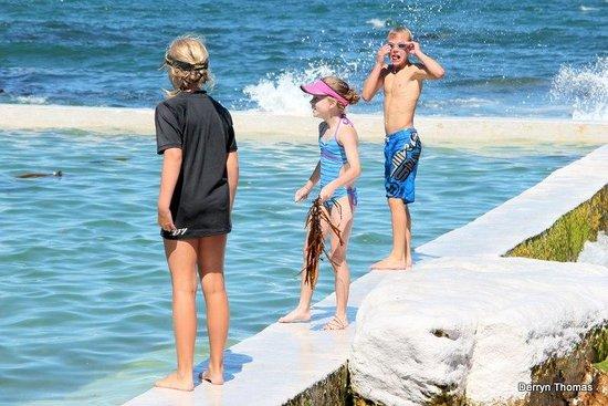 Brass Bell: kids loving the rock pool