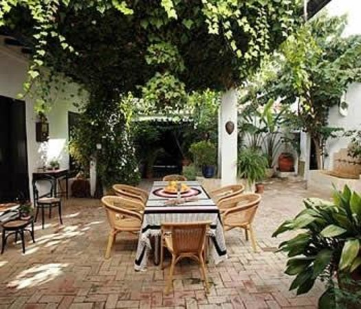 Art Boutique Hotel Chamarel : Courtyard Garden Area
