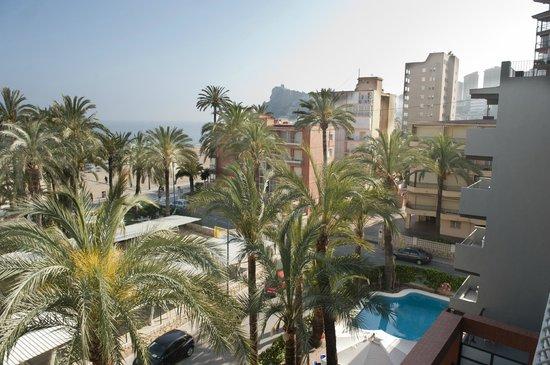 Hotel el Palmeral: alrededores. Playa de Poniente de Benidorm