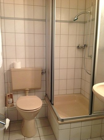 Im Wilden Mann: Bathroom