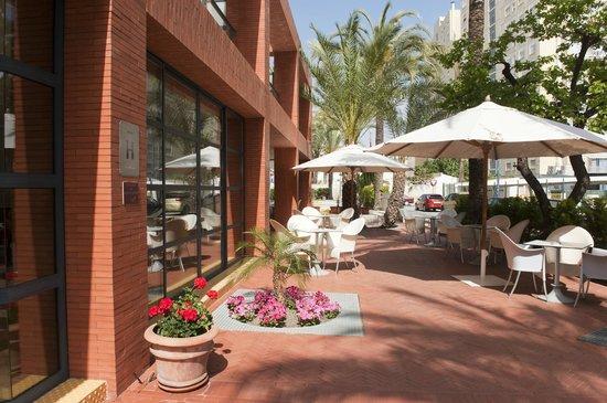 Hotel el Palmeral: área común: terraza
