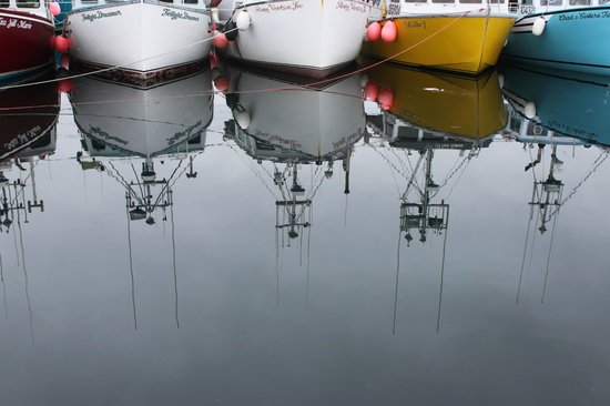 Bay of Fundy Inn: Fishing boats at the floating dock in Westport