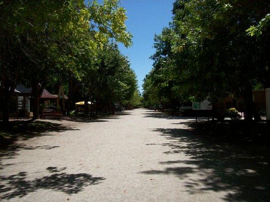 Termas Marinas: camino por el complejo.