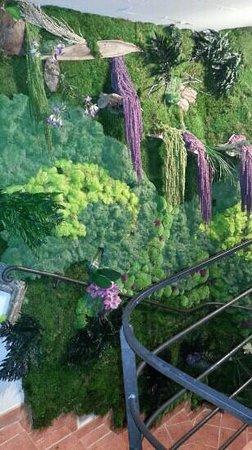 Hotel Le Grimaldi: le mur végétal
