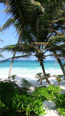 Hotel Cabanas Tulum: 4