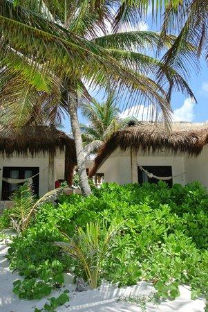 Hotel Cabanas Tulum: 5
