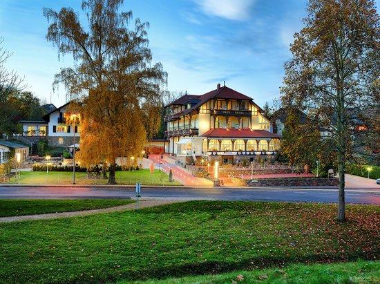 Park Hotel Bad Salzig