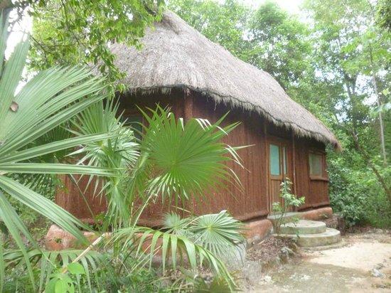 Jolie Jungle : Bungalow nature