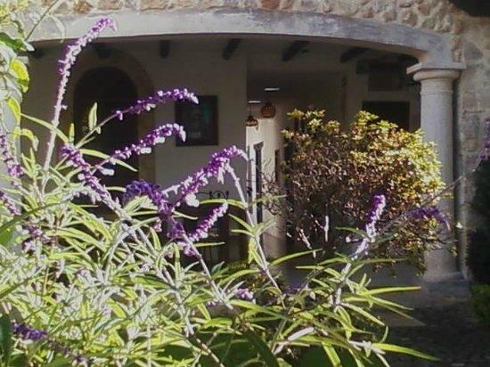 Hotel & Spa Santuario del Alba: zona de lecturas