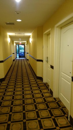 La Quinta Inn & Suites Lexington South / Hamburg: hallway