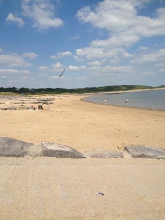 Parkdean - Trecco Bay Holiday Park: the dog friendly beach at trecco lovely