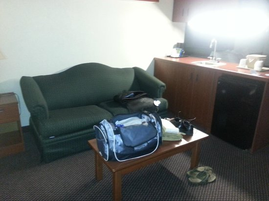 Microtel Inn & Suites by Wyndham Atlanta/Perimeter Center: Sitting Area