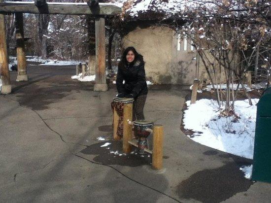 Denver Zoo: Pon pon !!