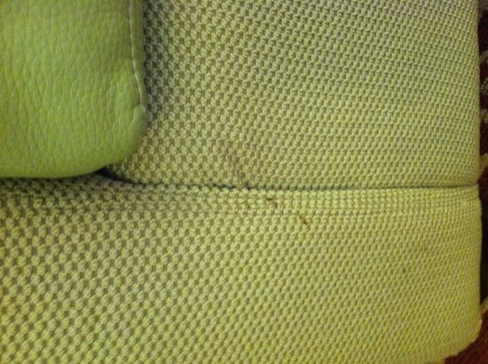 TownePlace Suites New Orleans Metairie: Dirty sofa