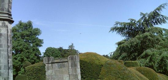 Elvaston Castle: Park