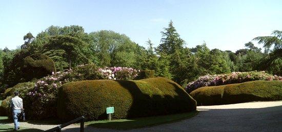 Elvaston Castle: Gardens