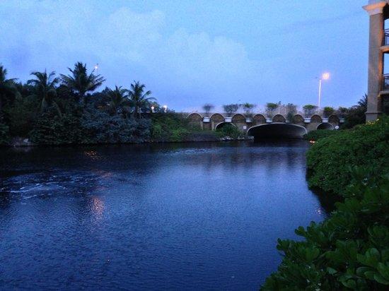 The Ritz-Carlton, Grand Cayman: Fish area