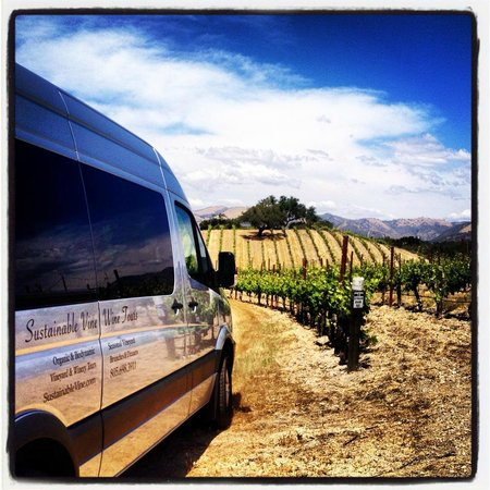 Sustainable Vine Wine Tours : Our Mercedes tour vehicle.  Comfort and Class.