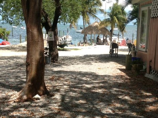 Key Lime Sailing Club and Cottages: View from our Cottage Drive