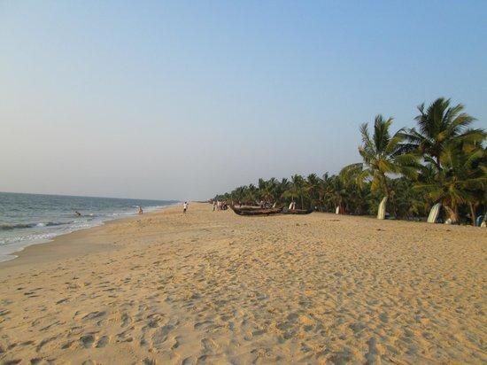 Palmy Residency: Marari Beach