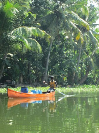 Palmy Residency: Boy on the Backwaters