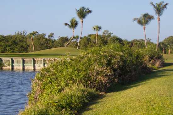 ‪Sanibel Island Golf Club‬