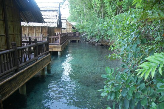 Pearl Farm Beach Resort: Samal Cottages Back