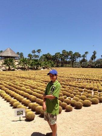Wirikuta Garden: un extenso jardin con miles de variedades de cactus!