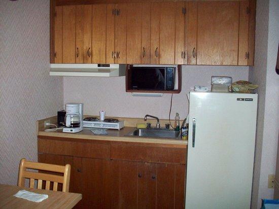 Beaver Lake Lodge of the Ozarks : kitchenette