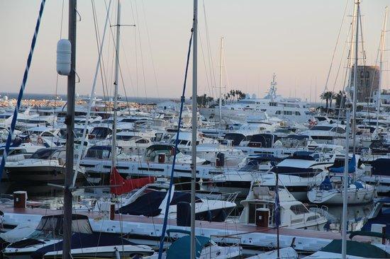Jacks Smokehouse: The many expensive boats
