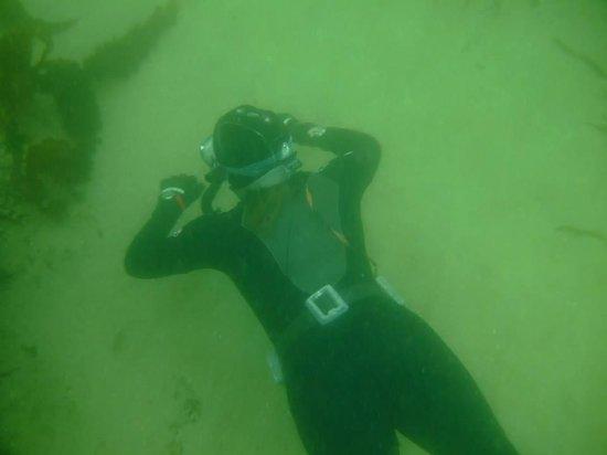 Freedive Ireland: Learning to freedive