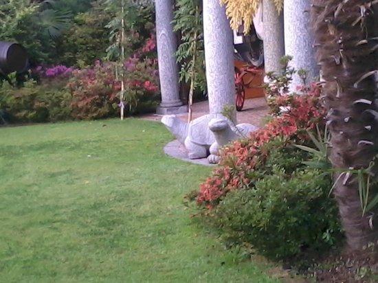 Conca Azzurra: tartarughe di marmo nel giardino dolcissime