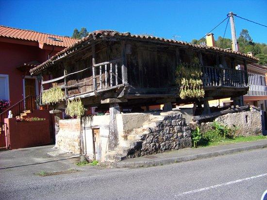 Hotel Maria Manuela: .