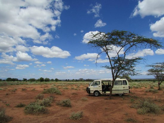 Lion Trails Safaris - Day Tours: Lunch break near Amboseli