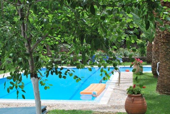 Katerina's Apartments : pool