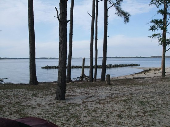 Tall Pines Harbor Campground: Beach and swim area