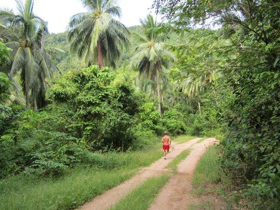 Horizon Muay Thai Boxing Camp: Running through the jungle