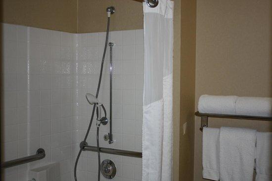 Holiday Inn Express Madera Yosemite Pk Area: Accessible Shower