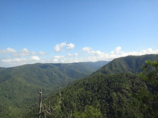 1000 Foot Falls: From the lookout spot
