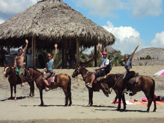 Viejamar Hostel: Horse rides