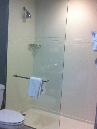 Residence Inn Denver Cherry Creek: Shower Only Bathroom