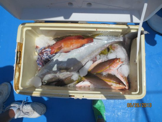 Pompano Beach Club: Chef prepared Snapper for us - Reef Fishing close by