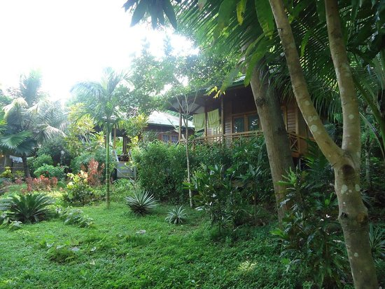 Bunaken Kuskus Resort: Bungalows