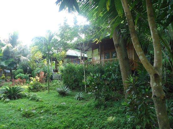 Bunaken Kuskus Resort: Bungalows