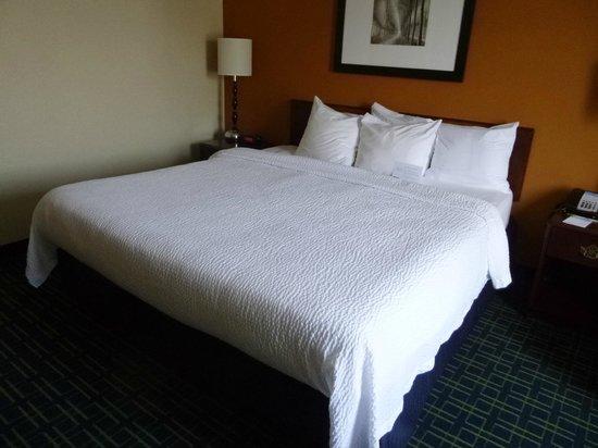 Fairfield Inn & Suites Frankenmuth : Room