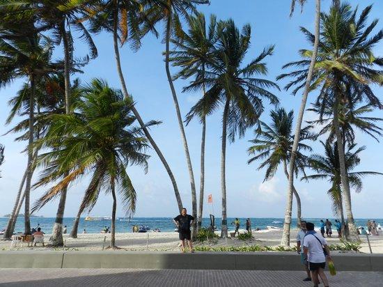 Sol Caribe Sea Flower Hotel : playa publica y peatonal