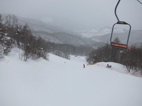 Sapporo Bankei Ski Area: コースの様子