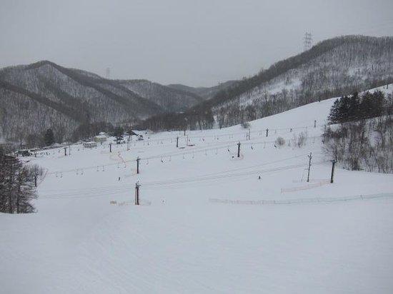 Sapporo Bankei Ski Area: コースの様子2