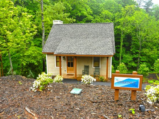 The Cabins at White Sulphur Springs: Chestnut Cabin #4