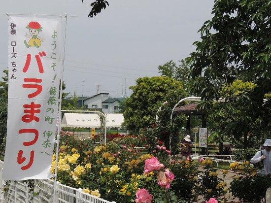 Ina-machi, اليابان: ばら祭り